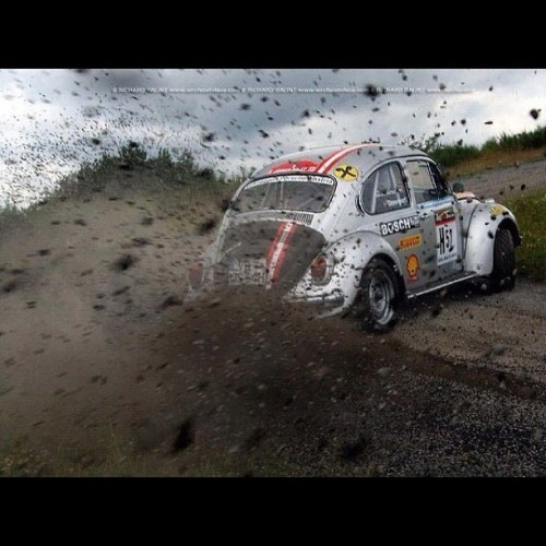 OMG. #VW #Beetle #rallycar #drifting and kicking up #gravel?! SO DAMN SICK. #Volkswagen #Bug #vwlove Find more like this on the MotorMavens.net Readers Blog!