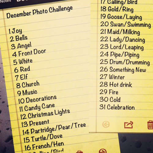 Photo Challenge is back for December! Take a photo! Tag a photo! Have fun with it! Post the photo on Tumblr, Instagram, Twitter or anywhere… Just don't forget to use this hash tag #PhotoChallengeDec2012