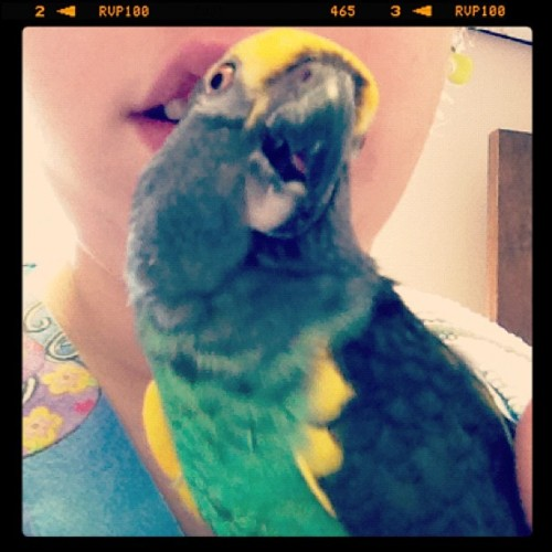 Day 3: something I #held - Max the only bird I will ever like. #fmsphotoaday (at Montgomery Animal Hospital)