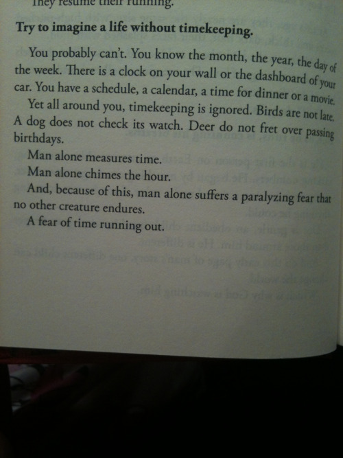 kennacle:  bendgravity:  wow  Beautiful  Mitch Albom's The Time Keeper- Im about a quarter of the way through. Its lovely yet not my favorite at the moment…