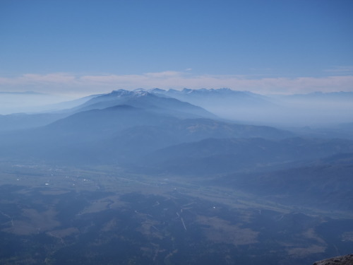 Here's a view from the summit of Mt. Shavano in Colorado.  Maybe this was better than seeing a gif of a cat high-fiving a dude— it's close.