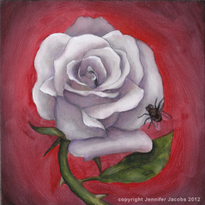 jennjacobs:  Memento Mori White Rose study 6x6, oil on board