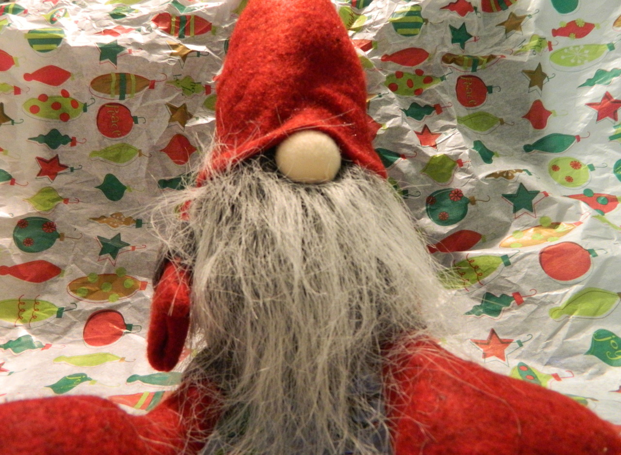 This is my cousin, Jerome the Gnome. He's visiting for the holidays.