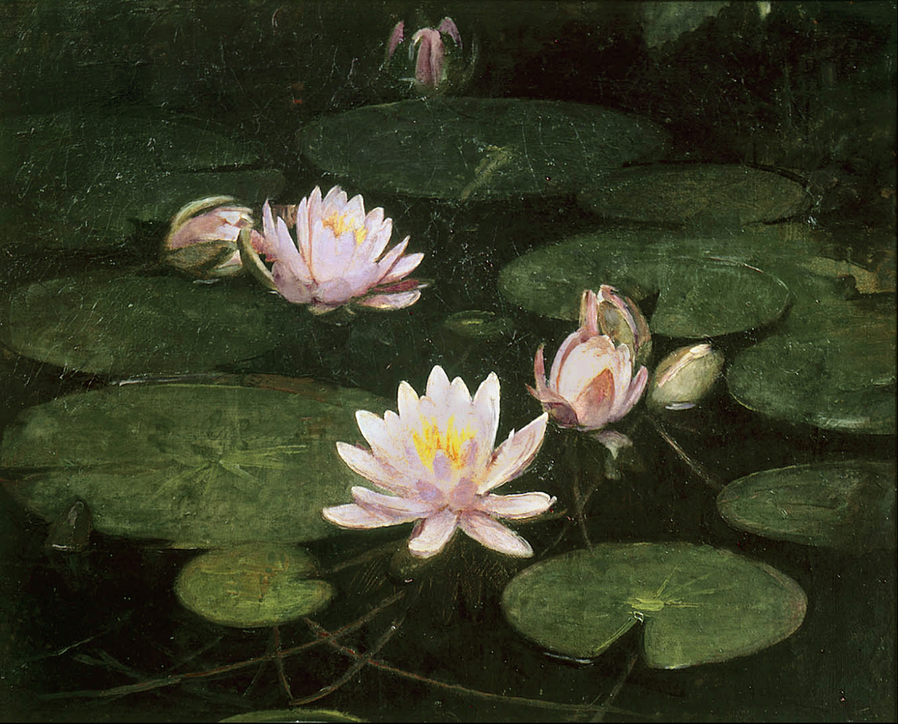 Abbott H. Thayer 'Waterlilies' 1884