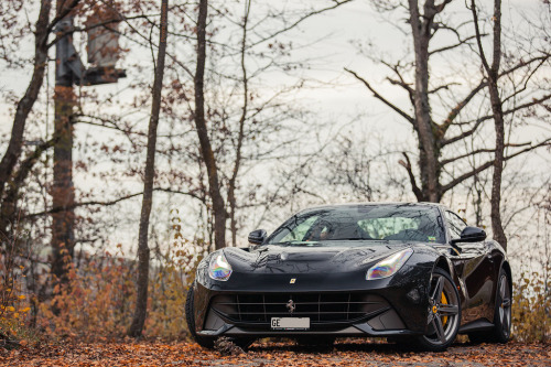 automotivated:  F12 (by Lambo8)