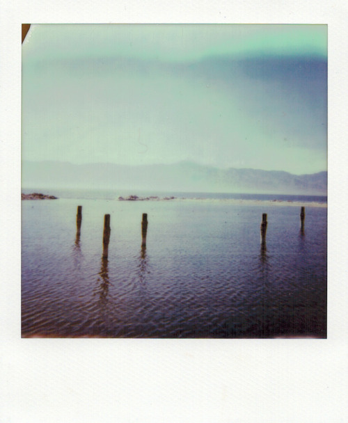 Salton Sea, California. December 2012. PX 680 Color Film