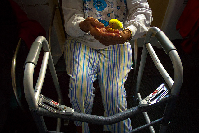 "Assisted Living on Flickr.San Francisco, CAFrom last month's visit to Buena Vista Manor with Mickaboo Companion Bird Rescue. See more of my photography on my website: www.meganwolfephoto.com ""Like"" my photography on Facebook: www.facebook.com/meganwolfephoto"
