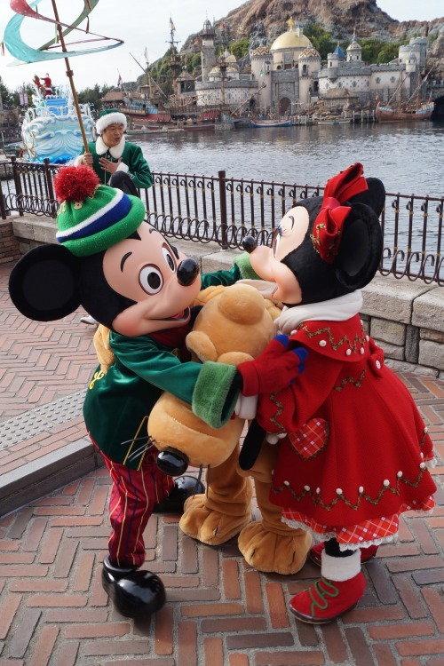 toontimes:  MickeyMouse and MinnieMouse @ TokyoDisneySea,MediterraneanHarbor(HolidayGreetingFromSevenPort) 12/2/2012