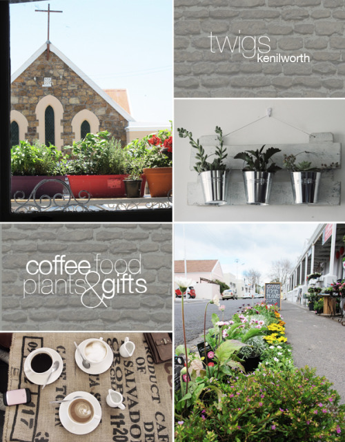 amilliontinybits:  My absolute favourite place to go and have coffee in Cape Town. Twigs in Kenilworth. Great coffee, nice gifts and illustrations, Jane's delicious chocolate tortes (I may be slightly biased here), chilled vibe and some plants if you're into gardening.