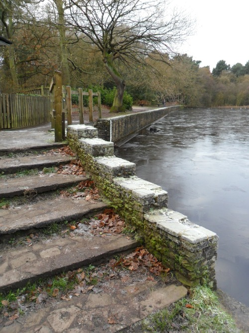 Frosty Steps at Bracebridge Pool, Sutton park, Sutton Coldfield, England.