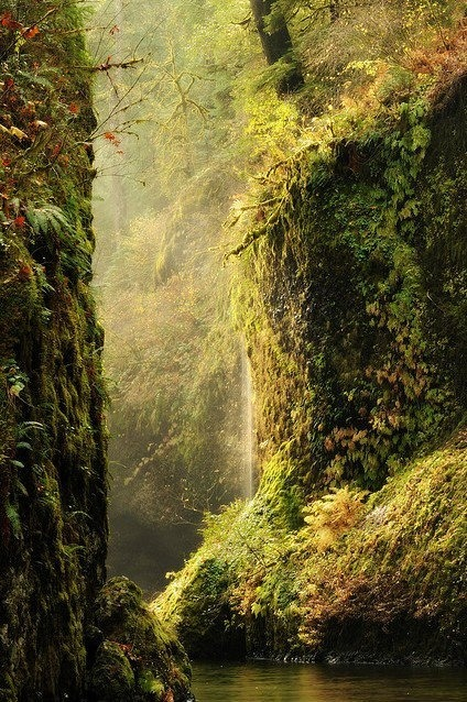 bluepueblo:  Columbia River Gorge, Oregon photo via riyssa