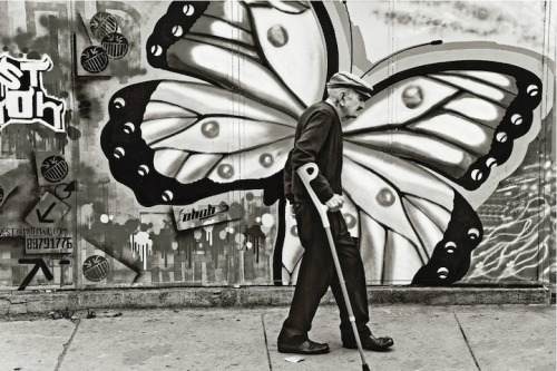 (via Metamorphosis by David Taggart - My Modern Metropolis)