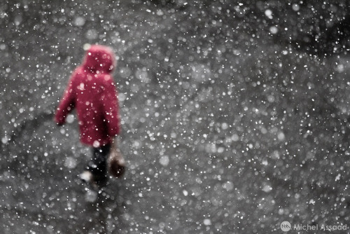 When it snows / A series by Michel Assaad shot entirely in Montreal. Link to the complete gallery, check it out. Follow me on my pages, i regularly update them: Facebook / behance / flickr / 500px