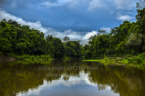 An expedition to the Upper Amazon and Pacaya-Samiria National Reserve, in Peru. Follow the journey along the rivers and through the tropical rainforest discovering numerous species of exotic birds, mammals, fishes and plants. http://allegriatravels.blogspot.com