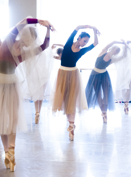 nationalballet:  The Corps de Ballet are deep in rehearsal as the Wilis for Giselle. Read more about why the Wilis give you the willies here. Artists of the Ballet in rehearsal for Giselle. Photo by Sian Richards.