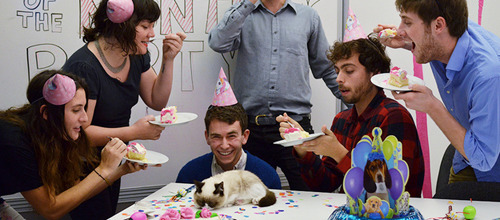 Yesterday, we hired Grumpy Cat as an editor and then we had an Employee Of The Month party for her, but she wasn't really into it.