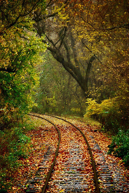visitheworld:  Autumn Express, Pennsylvania, USA (by Chad Brackeen).