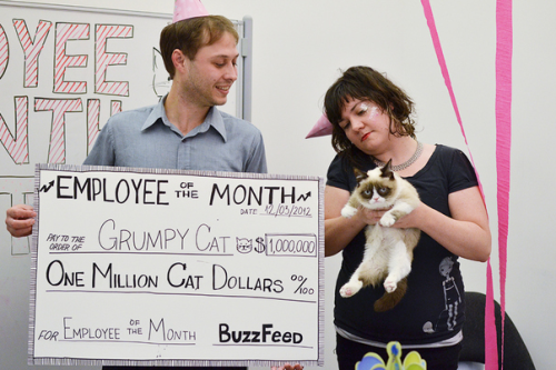 Grumpy Cat paid a visit to Buzzfeed yesterday and it left me feeling insanely jealous. Here's what went down.