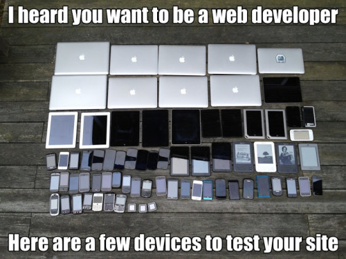 Wanna be a web developer? (via G+)