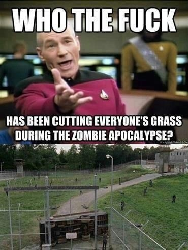 georgetakei:  The lawn and the short of it.