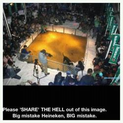 Heineken's Response to dog fighting rumor.   - The venue is a nightclub in Mongolia - The venue hosted a dog fight of which we had no knowledge and were not involved in any way - The venue owner has verbally confirmed that Heineken® banners are visible in the pictures because the previous evening the club had been decorated for a promotional event and he had failed to remove the banners once it was over. This event was in no way related to the dog fight Based on this we have taken the following immediate actions: - Removed all remaining promotional materials from the venue - Withdrawn all current product stock from the club - Ceased our relationship, ensuring our brands will not be available in the club again - Instructed our distributor to check every location where our brands can be enjoyed to ensure such illegal activities are not taking place. If there is any suggestion that they are, we will take the same action and remove our products - Continue to ensure our strict advertising and promotion guidelines are enforced both to the letter and the spirit of their intent Click here for full story