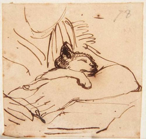 loquaciousconnoisseur:  Jean-Auguste-Dominique Ingres Kitten Sleeping in the Arms of Madame Ingres Musée Ingres, Montauban, France