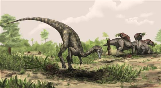 nbcnews:  Earliest dinosaur to walk Earth believed discovered (Photo: Natural History Museum, London / Mark Witton) A wonky beast about the size of a Labrador retriever with a long neck and lengthy tail may be the world's earliest known dinosaur, say researchers who analyzed fossilized bones discovered in Tanzania in the 1930s. Read the complete story.