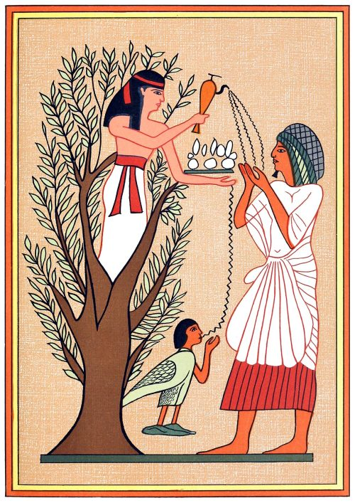 The goddess Mut pouring out water from the sycamore tree over the deceased and his soul.  From The gods of the Egyptians vol. 2, by E. A. Wallis Budge, Chicago, 1904.  (Source: archive.org)