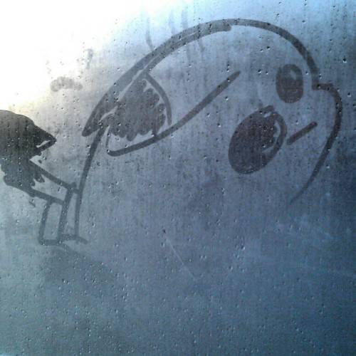 Drawing a pikachu on the bus shelter window. Let's see if it brightens up anyone's day.  #pokemon #pikachu #art #fun
