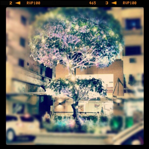 Purple Tree at Burgos Circle #instagramers #instagram #igersmanila #igersmakati #igersolongapo #igerspinoy #igersBGC #HolidaySeason #ChristmasLights #Purple