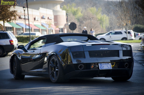 automotivated:  Nucci's Cars and Coffee 12/1/12 (by TMashPhotos)