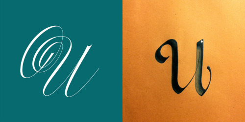 Vote! http://www.letteringvscalligraphy.com/distinguished-u/