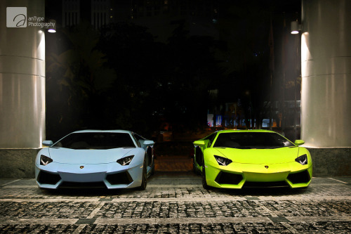 carpr0n:  Let's hear both sides Starring: Lamborghini Aventador (by anType)