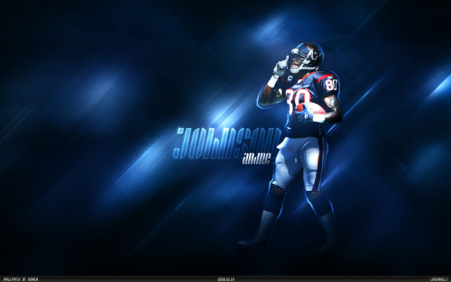 #ProCanes Wallpaper of the Day: Andre Johnson [@johnson80]