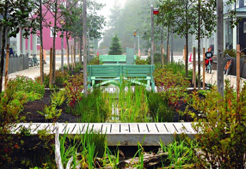 Seabrook, storm water management made usable public spaces