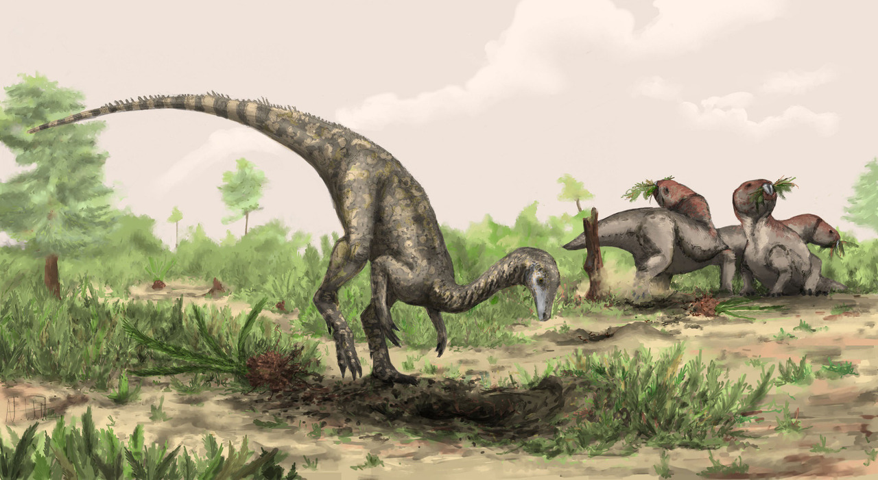 reuters:  Researchers have found what could be the earliest known dinosaur to walk the Earth lurking in the corridors of London's Natural History Museum. A mysterious fossil specimen that has been in the museum's collection for decades has now been identified as most likely coming from a dinosaur that lived about 245 million years ago - 10 to 15 million years earlier than any previously discovered examples. The creature was about the size of a Labrador dog and has been named Nyasasaurus parringtoni after southern Africa's Lake Nyasa, today called Lake Malawi, and Cambridge University's Rex Parrington, who collected the specimen at a site near the lake in the 1930s.READ ON: Earliest known dinosaur discovered