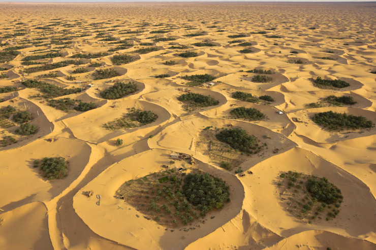 watershedplus:  The Adjder oasis in Algeria uses depressions excavated from the sand to reach shallow aquifers where the water is pumped to irrigate the palms, under which vegetables are grown.  The sharp edges along the rim of the oases are sand fences built to keep the mobile dunes from burying the gardens.  From The New Scientist  via Seeing Landscapes Picture by George Steinmetz