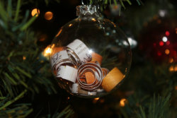 earth911:  Check out these 10 ornament ideas made from materials you probably have around the house to make your tree original and eco-friendly. Photo: Helena Swyter/Bye Bye Bitters