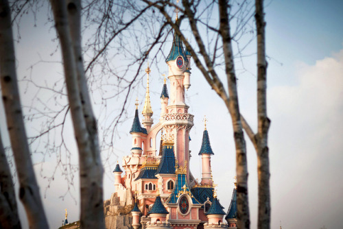 everydaydisneyfairytale:  Le Bois Dormant by Etienne.G on Flickr.