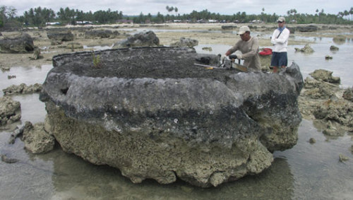 Coral die-offs hold clues to earthquakesAn analysis of the fossil coral beds provides clues to the history of mega earthquakes in the region, and could help predict future quakes