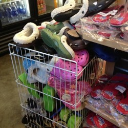 closeitwithakiss:  Stony brook, I'm pretty sure no one wants crocs… #eww #college #sbu #crocs #nope