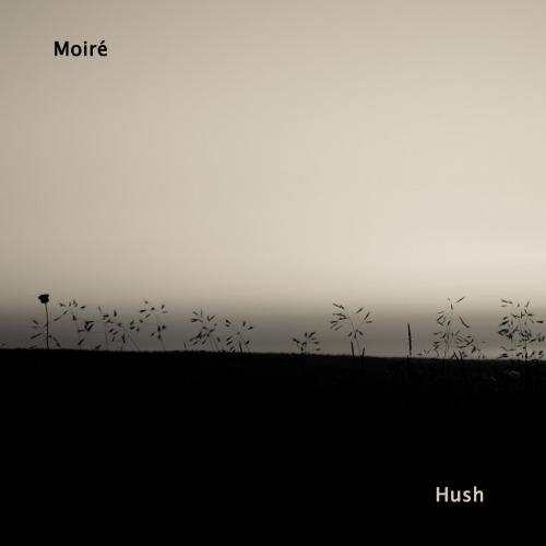 Moiré - Hush  Happy to see on our label two talented musicians from France. In his debut EP, they presented us a stunning sound. Interweaving of idm, acoustic and electronic music. Moiré is an electro acoustic duo blending wind instruments, vintage keyboards, dusty drum machines and sounds from the street, to achieve ambient tracks with a deep and introspective atmosphere. Рады представить вам на нашем лейбле дебютное ЕР двух талантливых музыкантов из Франции. Переплетение джазовых мелодий, айдиэмного хруста и умеренной ритмики. Акустическое звучание в идеальном сочетании с электроникой.  Красивая, спокойная музыка.  Tracklist 01. Hush 02. Papier 03. Scent 04. Selim 05. Thirty DaysRelease Information  Catalog:                  some015 All Music:               Moiré Release Date:         December 05, 2012 Type:                     EP Time:                     00:20:50 Artwork:                 Andrey RugarooDOWNLOAD FROM BANDCAMP DOWNLOAD MP3 DOWNLOAD FLAC