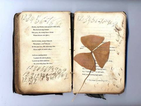 "Book that Came Across the Atlantic Ocean in 1847, along with my Ancestors (by Delina)       ""Several of my ancestors practiced their handwriting, letters and numbers in this book of poetry written about 1827. The book is pretty crumbly, but I love having it. I can picture the long voyage with boredom setting in and not much to write on or write with, for that matter. My file name says clover, but I am thinking it is a shamrock pressed in the pages. The book was given to me by an eccentric uncle of mine in about 1978 or so, when my children and I lived in Tulsa, Oklahoma. The book face page said it was written at the Dawn of the Reformation in Ireland. I checked around, and was told that would be about 1827. So the book was about 150 years old when I got it, and about 20 years old when children wrote in it. There were two children who belonged to my direct lineage, and then five of their first cousins with them, who had been orphaned. Imagine taking 7 children across the ocean on about a 3 month voyage. My direct ancestors are the couple that brought the 7 children over from Ireland, via Liverpool, England, to New Orleans, Louisiana, USA, and then up the Mississippi River to the area of Rockport and Preemption, Mercer County, Illinois, USA.. They were very brave or very desperate or both.""      That is indeed a shamrock, the symbol of Ireland :)"