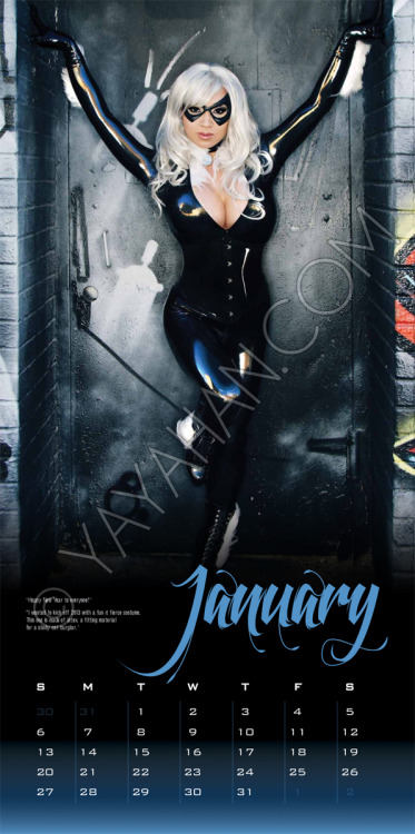 2013 Calendar layout - Black Cat - January by *yayacosplay
