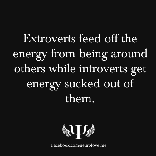 Extroverts feed off the energy from being around others while an introvert gets energy sucked out of them. Are You an Introvert or Extravert?