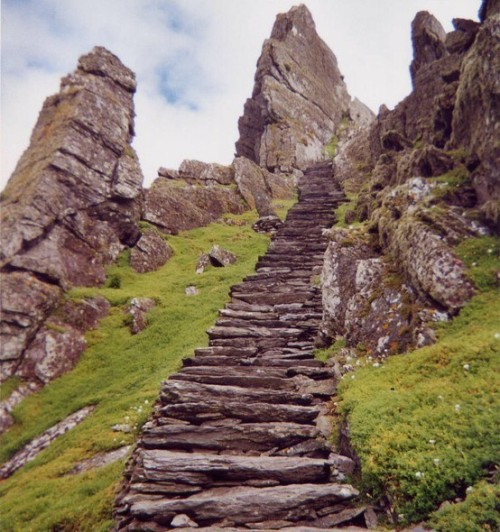 thenightmareofjawz:  Stone steps, Ireland