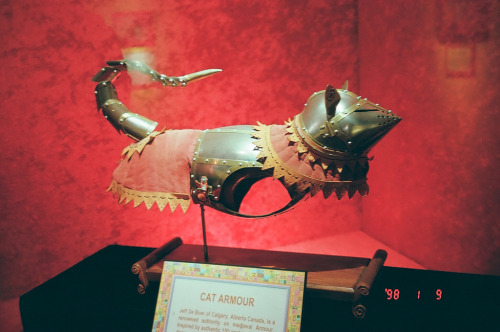 thewolfandowl:  CAT. ARMOUR. CAT ARMOUR.