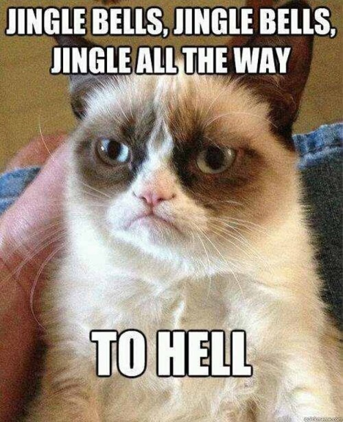 Grumpy Cat has the right idea about this Christmas mumbo jumbo.