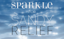 Welcome to the 'Sparkle for Sandy Relief' fundraising auction. This endeavor brings together the work of over 90 jewelry designers and international brands for one important cause: supporting Hurricane Sandy relief efforts.  All of the proceeds from the auction will be donated to Waves for Water's Hurricane Sandy Relief Initiative, a 501c3 charitable organization.
