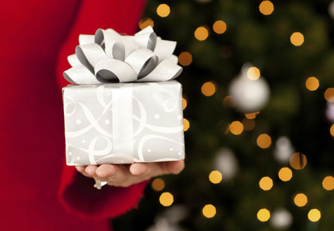 From mom to your techie BF, we have the perfect gift guide for your holiday shopping!
